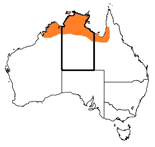 Distribution map Darwin Carpet python